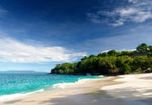 Paradise Property Group wins Best Real Estate Agency Bali