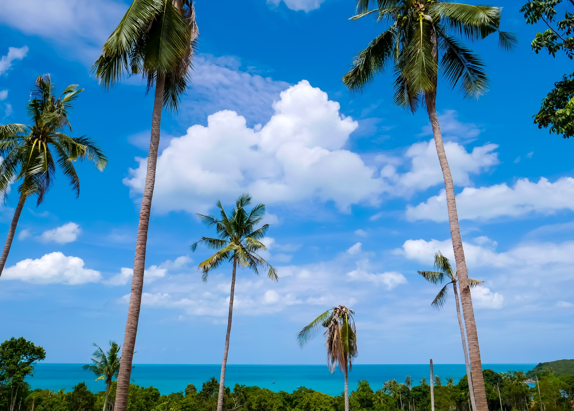 Samui staves off COVID-19 blues due to an increase of entry-level villa demand
