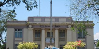 Davao condominium developments