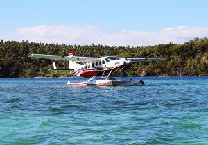 Seaplane Flight Direct to Banwa Private Island