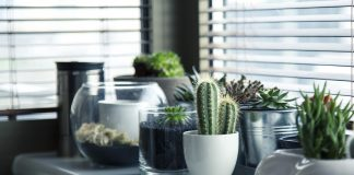 2019 interior design trends for condos