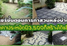จัดสวนหลังบ้าน,สวนหลังบ้าน,สวนหลังบ้านสวยๆ,จัดสวนสวย,จัดสวนราคาประหยัด_1