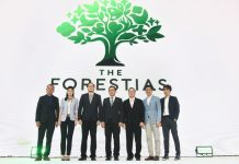 THE FORESTIAS-3